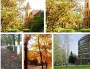 Осенне-зимние акции в санатории Красный Холм