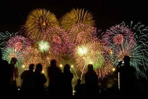 Не сидите дома! Встречайте Новый год 2018 весело, за городом, на всем готовом!